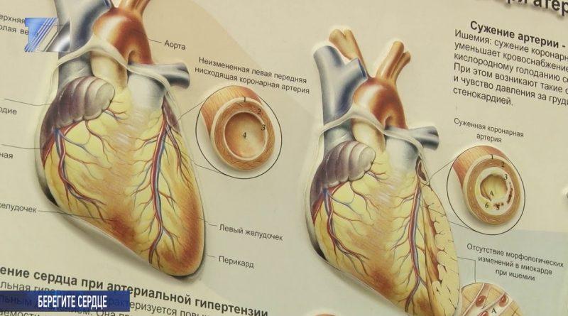 Всемирный День борьбы с гипертонией