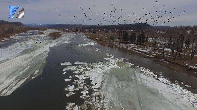 Реки освобождаются ото льда