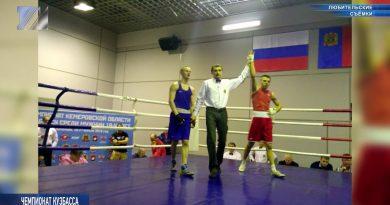 В Кемерове прошёл чемпионат Кузбасса по боксу