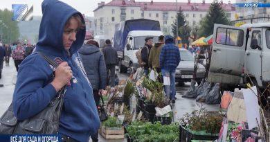 19 мая пройдёт ярмарка «Всё для сада и огорода»