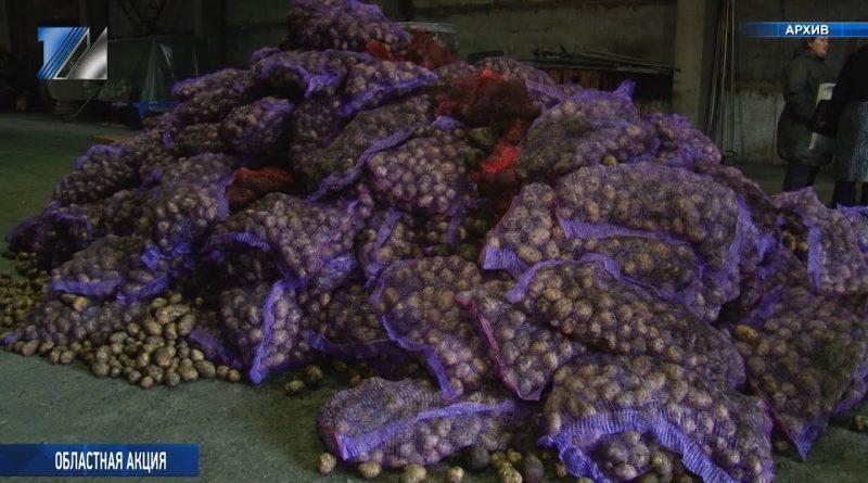 С 24 сентября стартует доставка овощных наборов