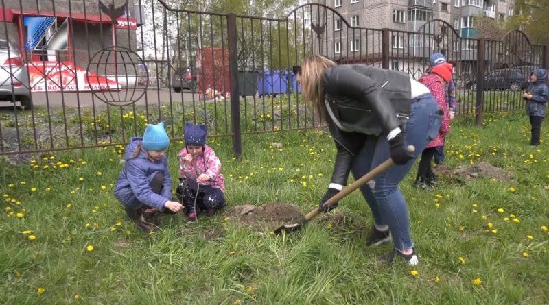 Подарили деревья городу
