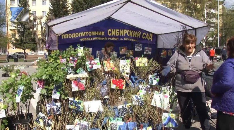 В помощь дачникам – ярмарка «Всё для сада и огорода»